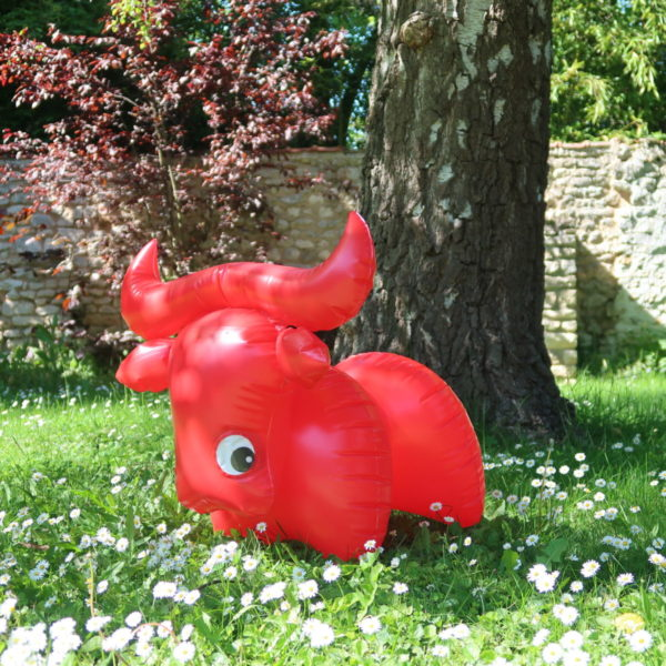 Buffle gonflable rouge